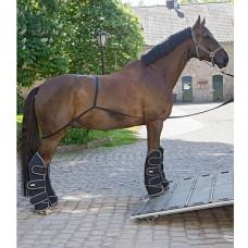 Система для погрузки лошади в коневоз WH