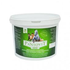 Премикс PantoVit Energy Hidalgo, 5 кг
