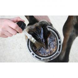 Средство с чайным деревом для копыт Tea Tree Hoof Oil CDM, 500 мл